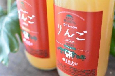画像2: カナちゃんちのリンゴジュース12本